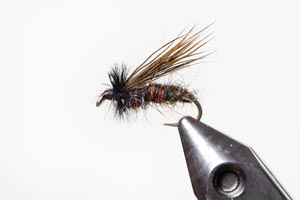 Sedge Emerger