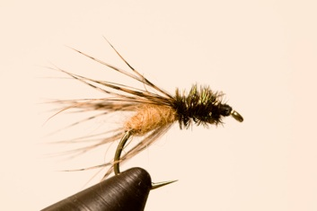 Caddis version 2